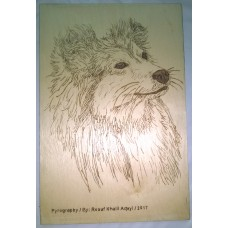 Pyrography Panel of a Dog